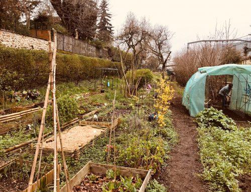 Urgence sanitaire Covid 19 : le Jardin des Voisins est fermé